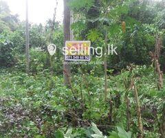 Commercial, Residential Land in Kalagedihena