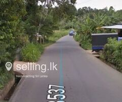 House for Rent in Kandy - Warallagama