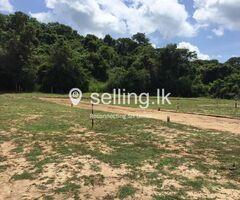 Land for sale in Kumbukgete Kurunegala