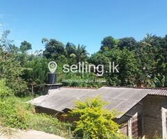 Land for sale near Welimada town
