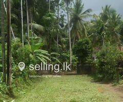 land for sale in Gampaha mandawala