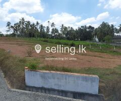 10-Perch Land for Sale in Delgoda