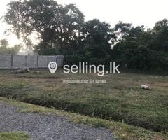 Land for Sale in Nattandiya