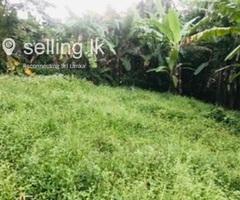 Land for Sale Andiambalama