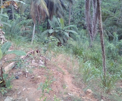land for sale in Nakiyadeniya
