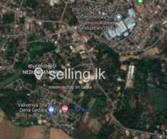 Valuable Rubber land for sale Gampaha  Nadungamuwa