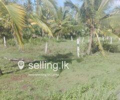 Weeraketiya Land for sale