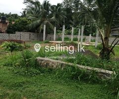 Land For Sale in Polgahawela