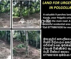 Land for immediate sale in Kandy