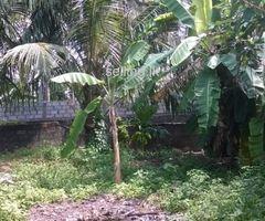 land in boralesgamuwa