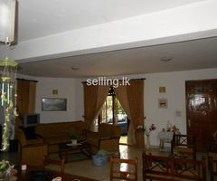 House with property for Lease in Giriulla
