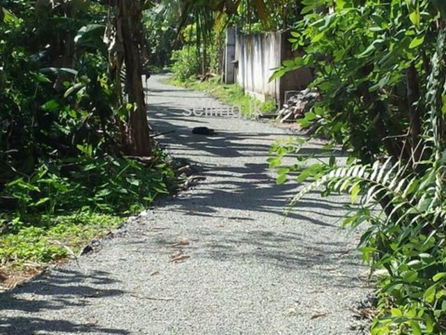 Land for sale in Galle (within city limits)