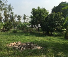144 perch Commercial land faced to Kandy road