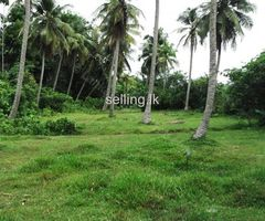 Nainamadama Land for sale