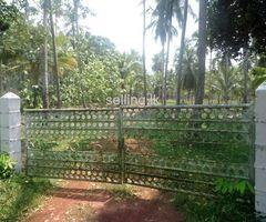 15 Acres Coconut Land for Sale in Badalgama.