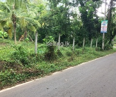 A good land for sale in Gampaha