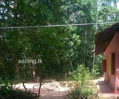 House for sale in Kamburupitiya