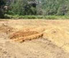 Land for sale in kandy-pilimathalawa