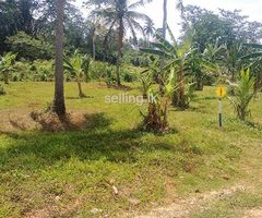 Land For Sale in Kurunagala