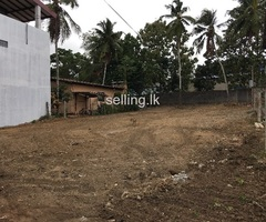 Land for sale pannipitiya