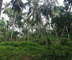 Land for villa in Akmeemana