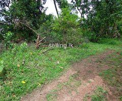 Land For Sale in Makola