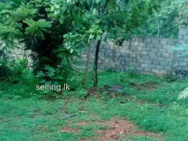 land Sale in Kaduwela