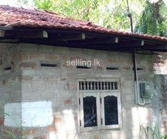 Land for sale in Anuradhapura