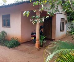 House For sale in medawachchiye town