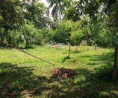 Valuable land at Kurunagala