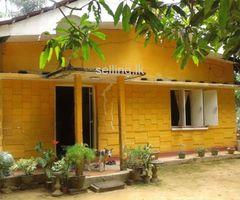 Houshe in Kegalla