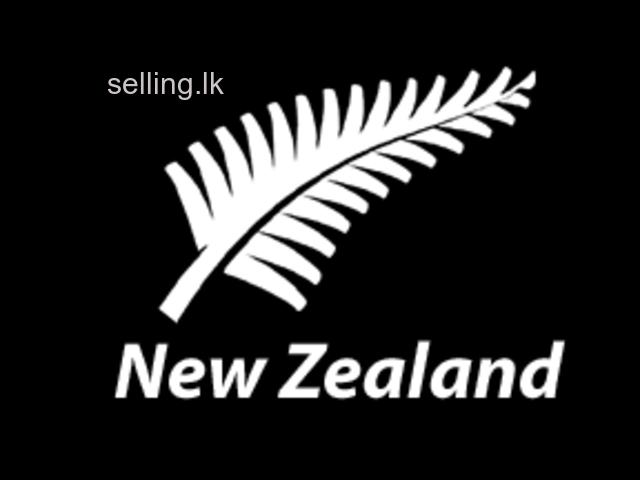 Visit visa to new Zealand