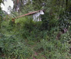 5 acre land for sale in Walewala at Atipola Road (Matale)
