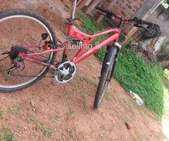 Mountan japan bike