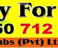 lorry van car for hire