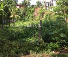Panadura Paratha Dolewatha Land for Sale