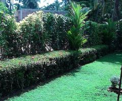 House for Sale in Kottawa