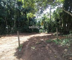 Land for sale - Welmilla