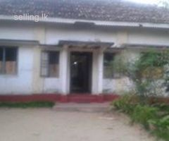LAND & HOUSE IN WELIGAMA IS FOR SALE