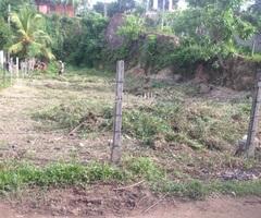 Panadura Dolewatha Land got Sale