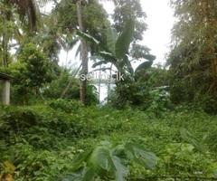 kurunegala tawn land for sale