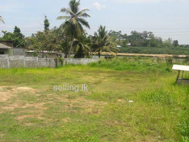 Lands in Kosswatta | Thalahena | Malabe