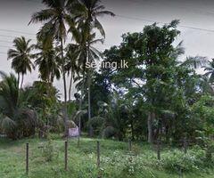 Land For Sale - Batepola Dunagaha