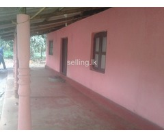Two Bedroom House in Pothuhara