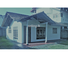 Land Sale or Rent with House(Hittatiya-Matara)