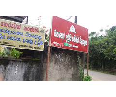 50P Land in Horana