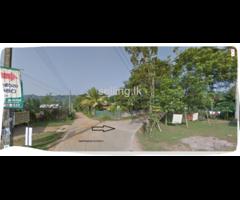 50P Land in Horana