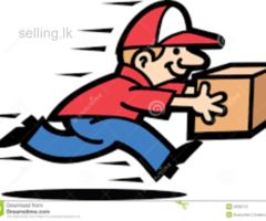 domestic courier services.
