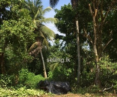 Land and house sale