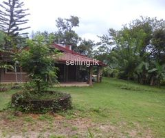 house with toacres sale in peradeniya